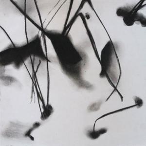 Gräser im Schnee, 2014, Pastell auf Papier