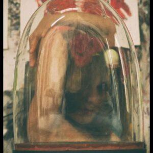 """""""Rosa"""", aus """"Dome of Darkness"""", Fotografie auf Karton, Klebeband, Glas, 1/3 + 1AP, 23.5cm x 17cm, 2021"""